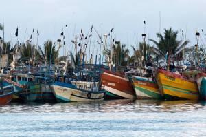 Barcos en el puerto de Mirissa, Sri Lanka