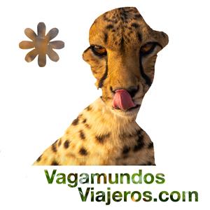 Vagamundos Viajeros Logo Guepardo