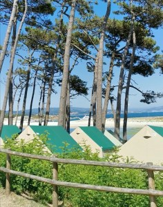 Tiendas que alquila el camping de las islas Cíes