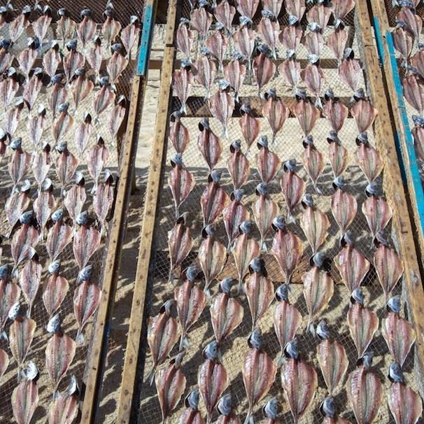 Museo do Peixe Seco en Nazaré