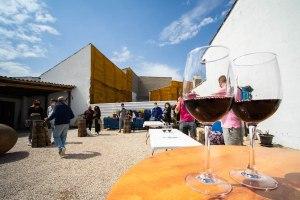 Cata de vinos en la Bodega del Nero, Chinchón