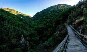 Pasarelas del río Mao, Ribeira Sacra, Ourense