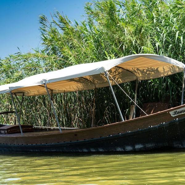 Barca para paseos en la Albufera