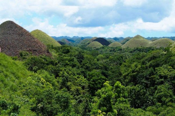 Que ver y que hacer en Bohol en tres días