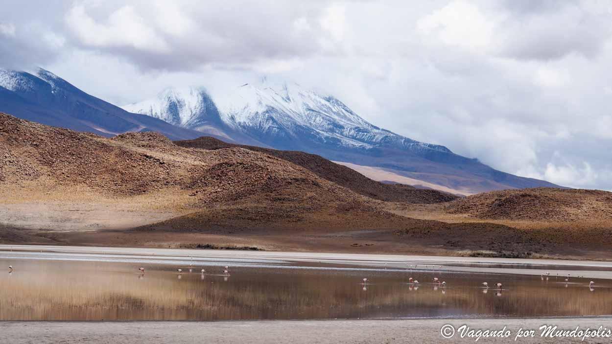 lagunas-altiplanicas-bolivia