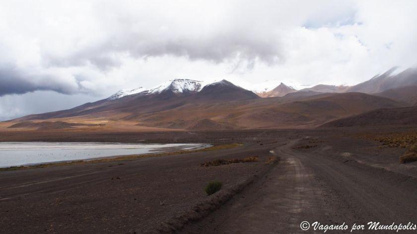 laguna-cañapa-bolivia