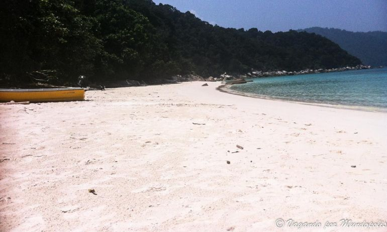 turtel-beach-besar