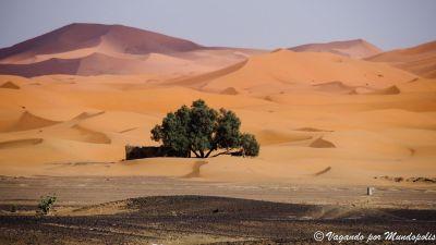 dunas-erg-chebbi-marruecos