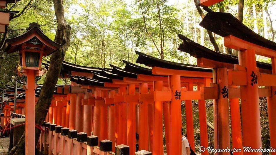 excursion-fushimi-inari-taisha