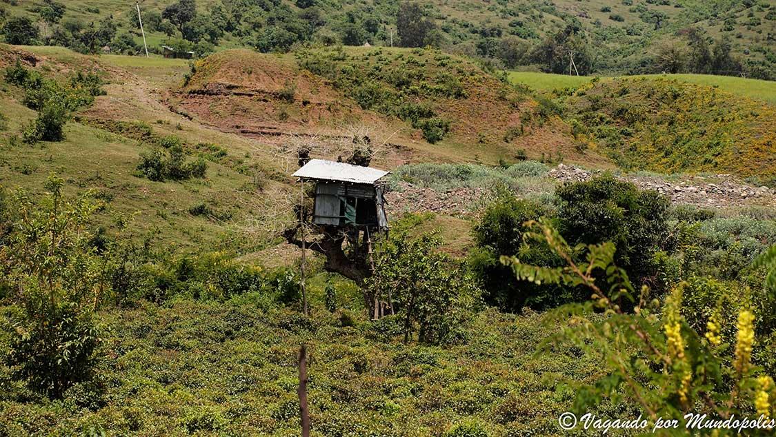 que-ver-en-gondar-etiopia