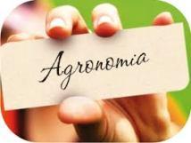 Faculdade de Agronomia - As melhores, onde fazer