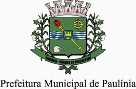 Cursos Pronatec Cultura Paulínia 2015 01
