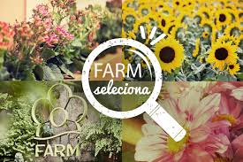 Vagas de emprego na Farm