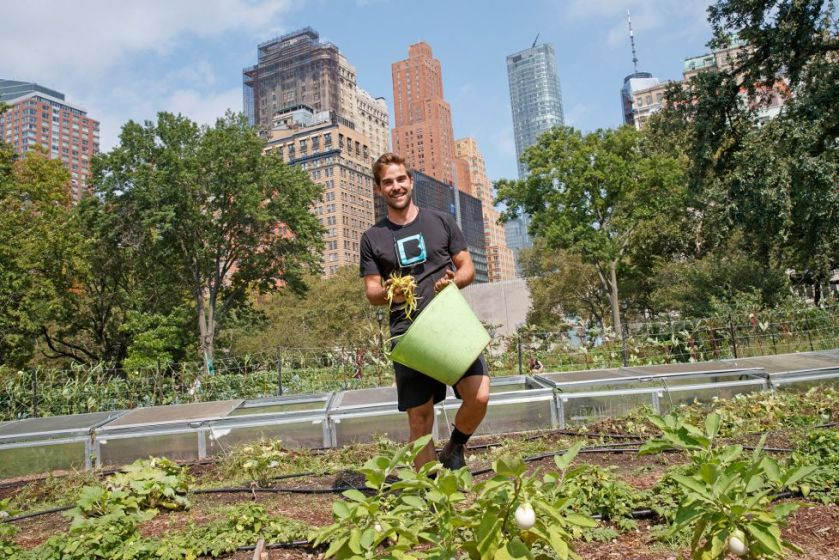 Permaculture in the city - NYC Urban Farms