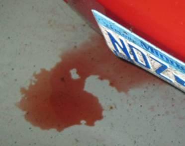 Fluid leaks: Power steering fluid
