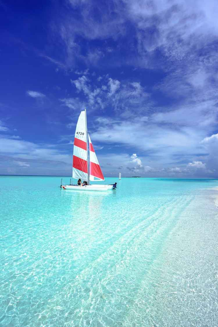 red and white watercraft on body of water