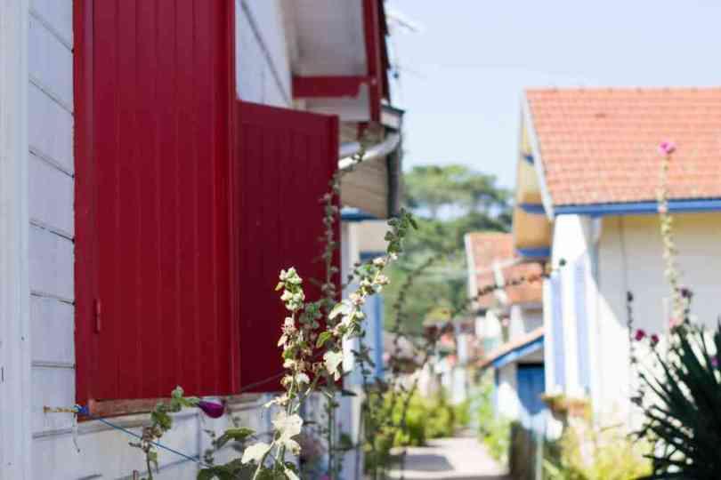 DSC_0565-village-herbe-bassin-arcachon2016