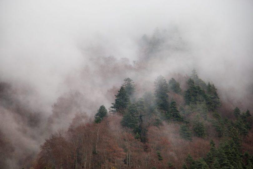 img_9418-automne-valbonnais