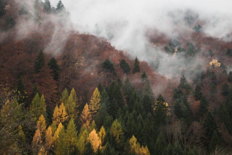 img_9434-automne-valbonnais