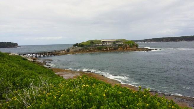 view_of_bareisland