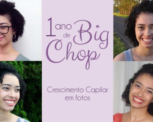 1-ano-de-big-chop-em-fotos-crescimento-capilar