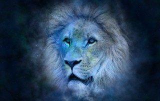 Лев. Гороскоп на август 2020 года