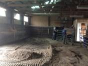 2015-04-28 barn manure removal