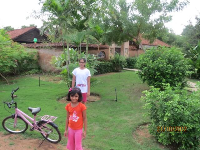 greenery cottage