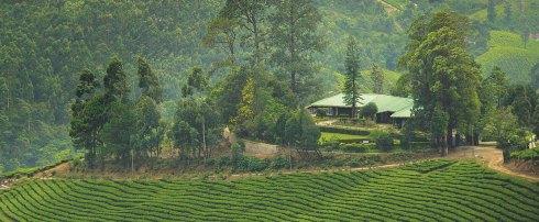 Talayar-Valley-Bungalow