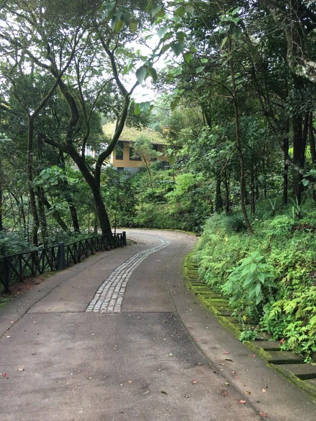 Taj Coorg cottage path