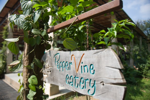 Pepper Vine Catery