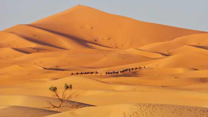 merzouga, Erg chebbi, Marokko, avontuur, SNP Natuurreizen