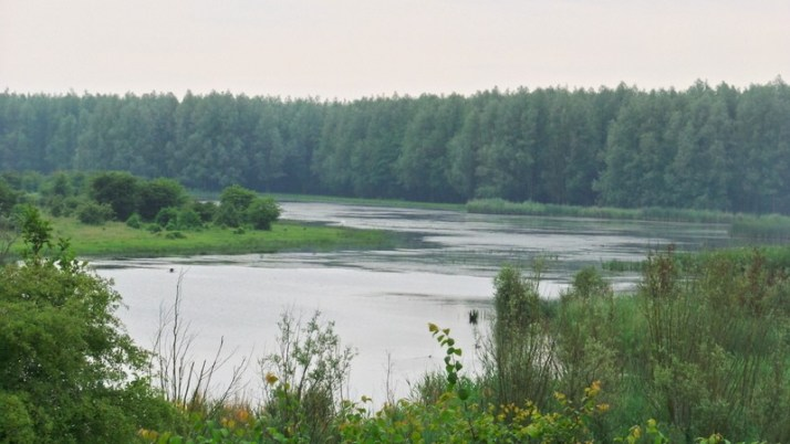 Horsterwold, Vakantaseren, Flevoland