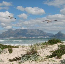 Rondreis Zuid-Afrika en Swaziland