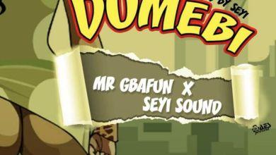 Photo of Mr. Gbafun x Seyi Sound – Dumebi