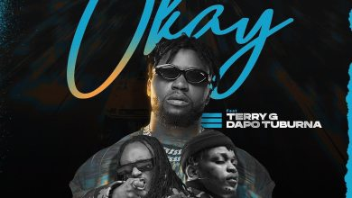 Photo of DJ Enimoney – Okay ft. Terry G, Dapo Tuburna