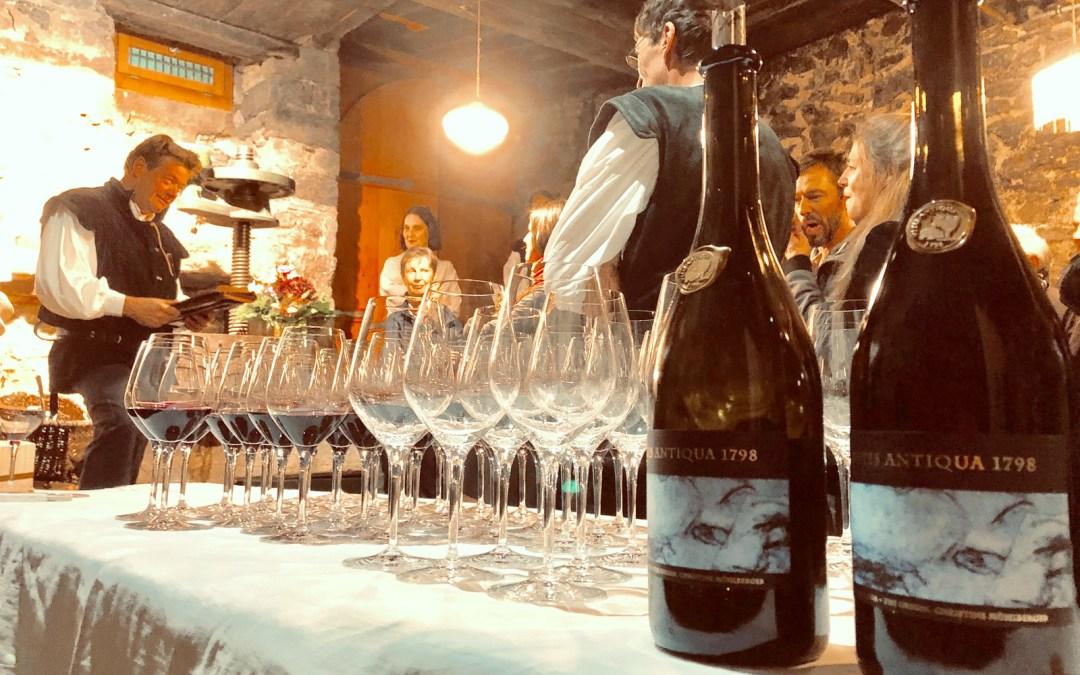 À Loèche, on vernit la cuvée 2018 de Vitis Antiqua 1798 issue de la plus vieille vigne vivante de Suisse