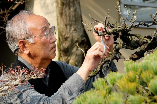 yamada-pruning
