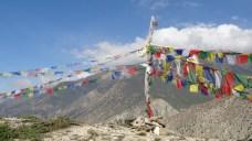 Gebetsfahnen im Stil tibetischer Buddhismus auf einem Huegel oberhalb von Thinigaon