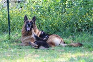 Rayno et Lovana