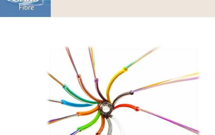 Logo de la fibre