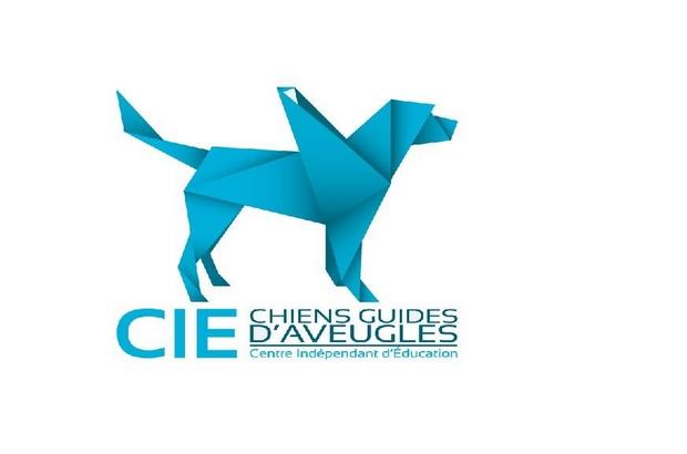 Bailly Romainvilliers ►Les Chiens Guides d'Aveugles cherchent familles d'accueil
