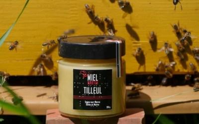 Découvrez le miel de tilleul de Coupvray le 16 novembre à la miellerie de Lagny sur Marne