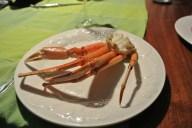 crabe-chez-francois (28) (Copier)