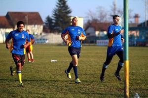 Muresan rugby