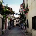 La bonita iniciativa de Aras de los Olmos: llenar 16 rincones del pueblo con flores y plantas