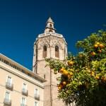Qué hacer en Valencia este fin de semana (del 10 al 12 de noviembre) – AGENDA DE PLANES
