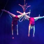 Espectáculos circenses GRATUITOS durante el mes de febrero en el Centre del Carme