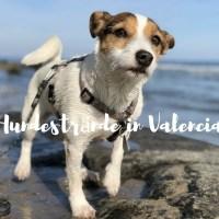 Hundestrände in Valencia 2019
