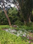 Jardines de Montforte_Güne Oase_Valencia_Insidertipp